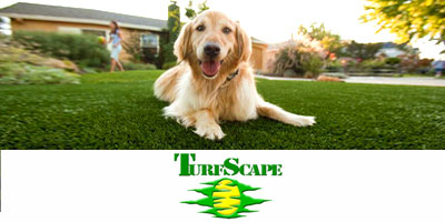 Turfscape